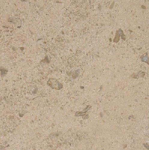Corton Coquille Limestone