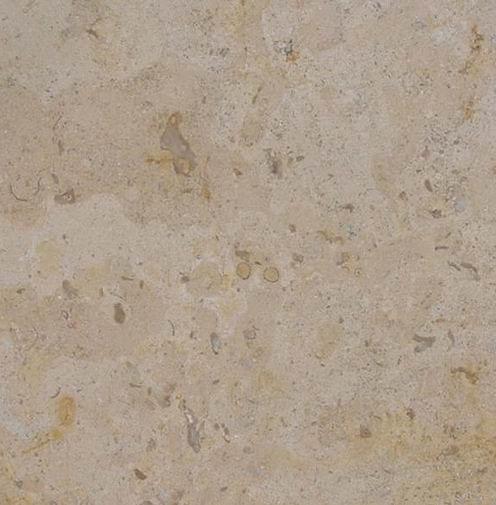 Corton Fleury Limestone