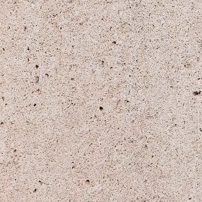 Crema Fosil Limestone