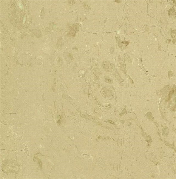 Crema Moca Limestone