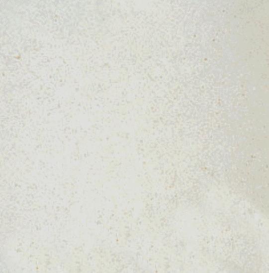 Crema Mocha Limestone from Turkey