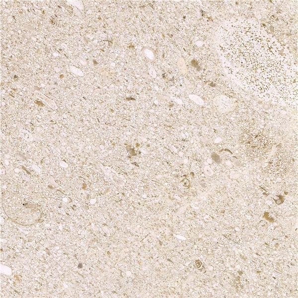 Crema Perla Marina Limestone