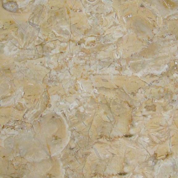Crema Oro Marble