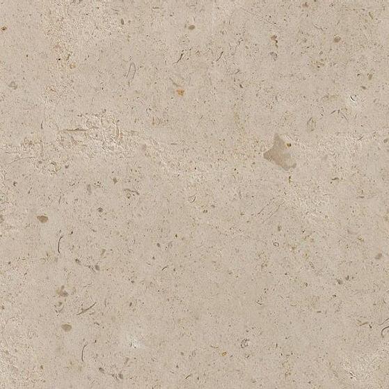 Creme Caribe Limestone
