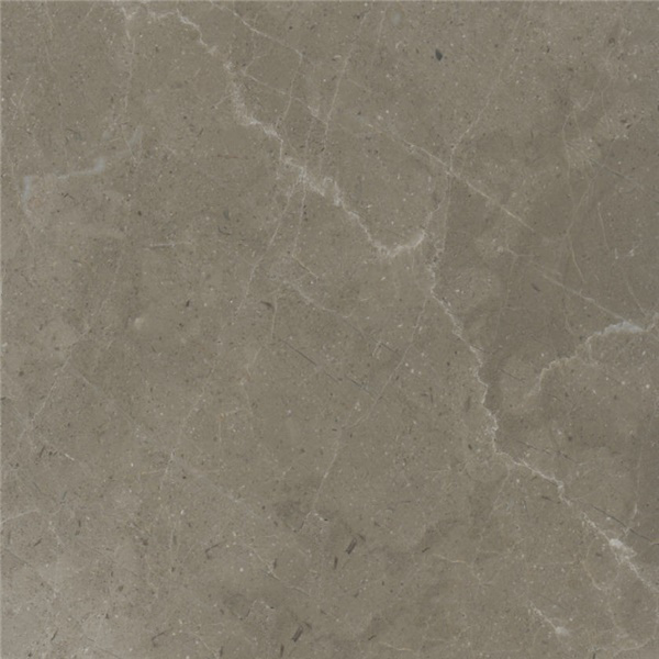 Dalya Grey Marble