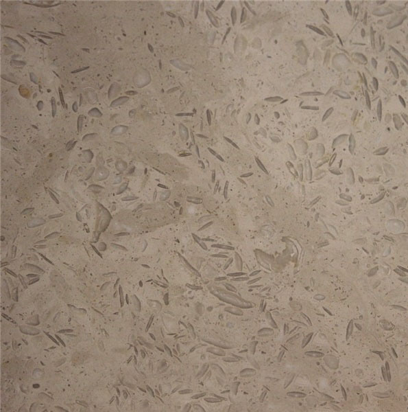 Dark Fossil Beige Limestone