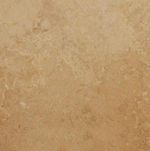 Dark Beige Fossil Marble