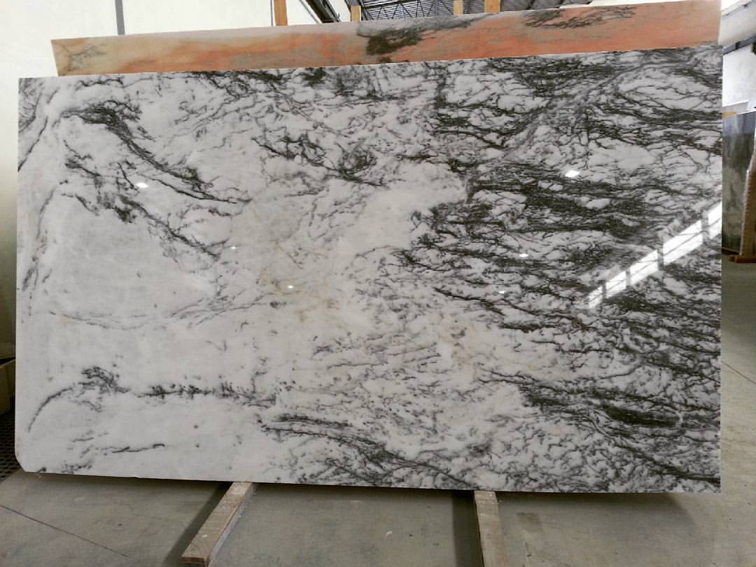 Dynossaurus Marble Slabs Polished White Marble Slabs