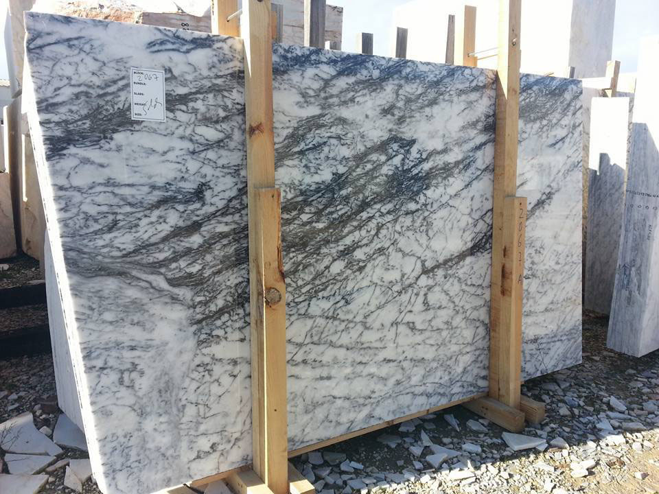 Dynossaurus Marble Slabs White Polished Marble Slabs