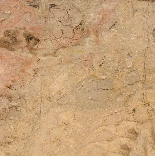 Egypt Sahara Beige Marble