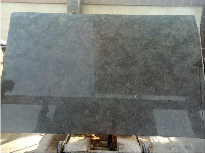 Egyptian Marble Melly Grey Fossils Slabs