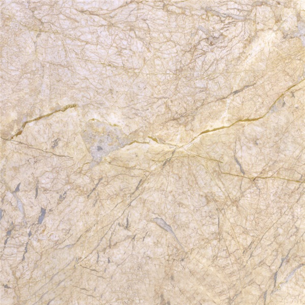 Feather Gold Marble