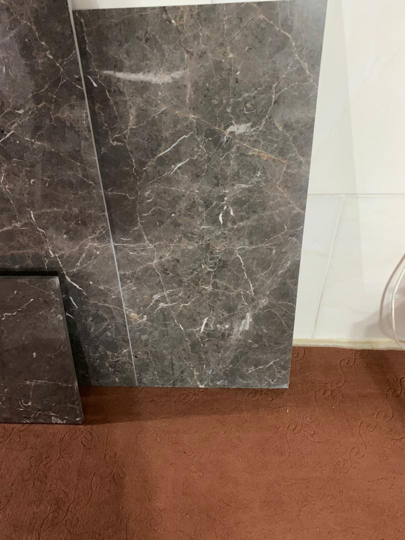 Fossiliferous Gray Marble Tiles Iranian Grey Marble Tiles