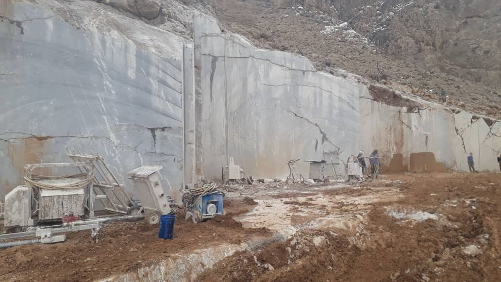 Fossiliferous Marble Quarry Grey Marble Blocks for Export