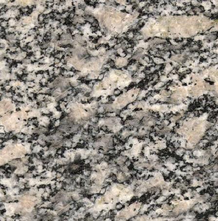 Ghiandone Valmasino Granite