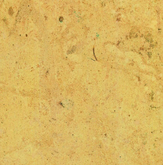 Giallo Mediterranean Limestone