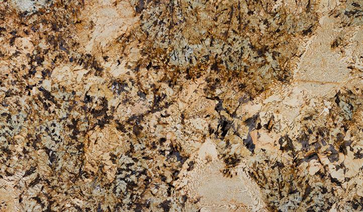 Gold Persa Granite