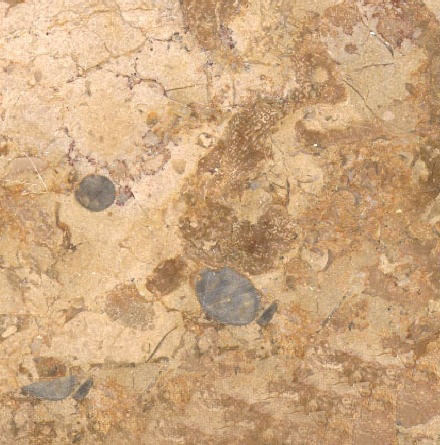 Gold Africa Yellow Marble