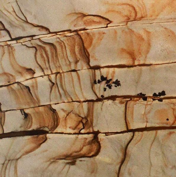 Golden Butterfly Quartzite
