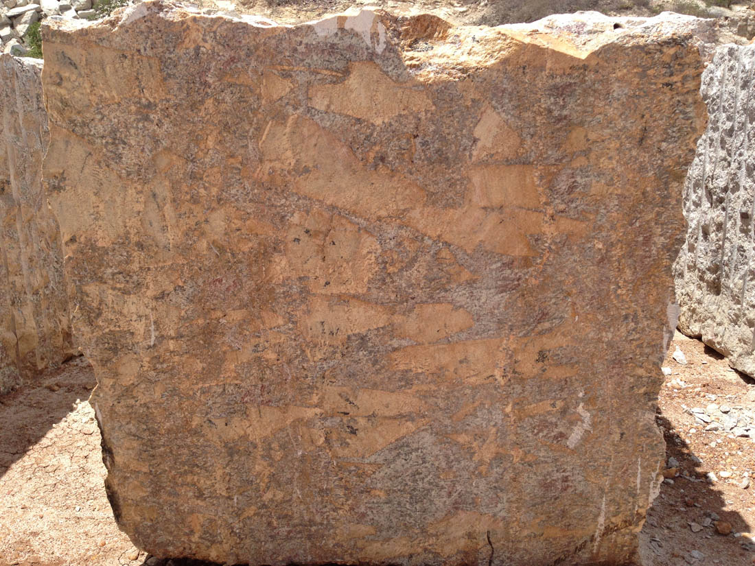 Golden Flakes Granite Blocks