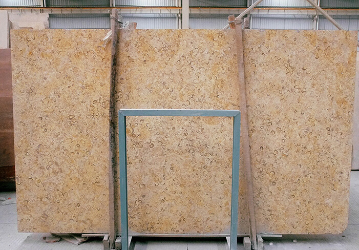 Golden Shell Marble Yellow Marble Slabs