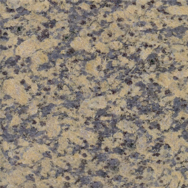 Golden Autumn Grain Granite