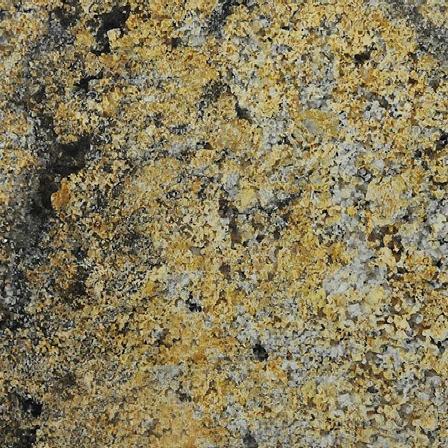 Golden Odyssey Granite