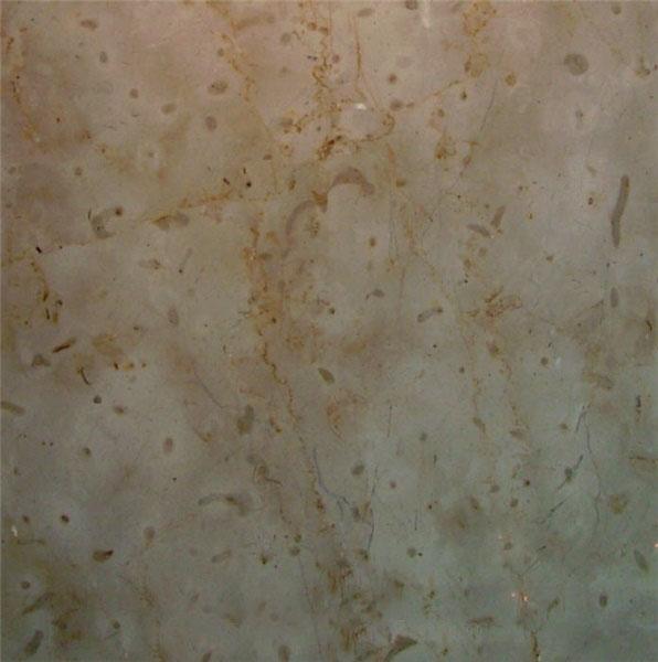 Gotic Mory Limestone
