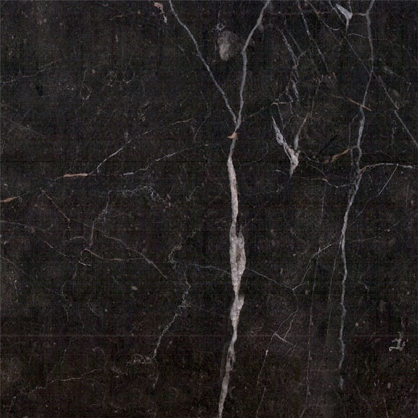 Haveli Black Marble Color