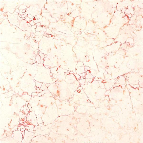 Ivory Rosalia Marble