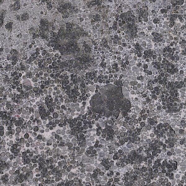 Jinan Dark Green Granite Color