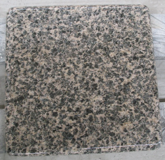 Leopard Flower Granite Polished Granite with Top Quality