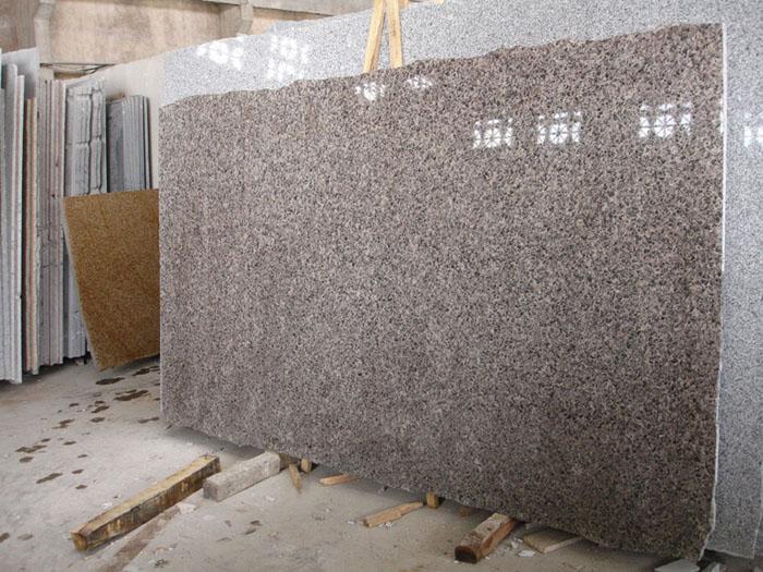 Leopard Skin Flower Granite Polished Slabs for Countertops