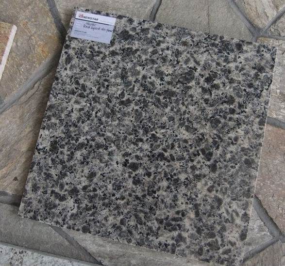 Leopard Skin Granite Tiles from China Supplier