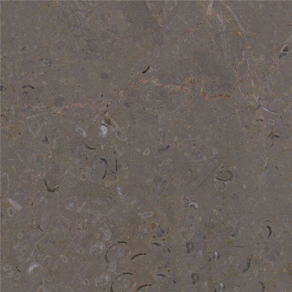 Lericy Marble