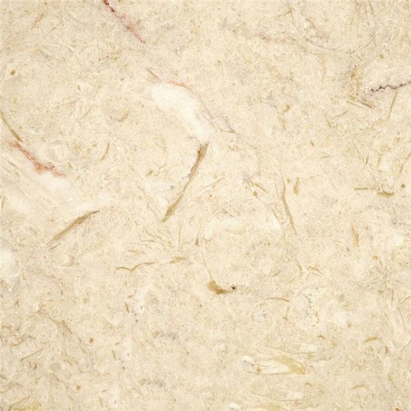 Lioz Claro Limestone