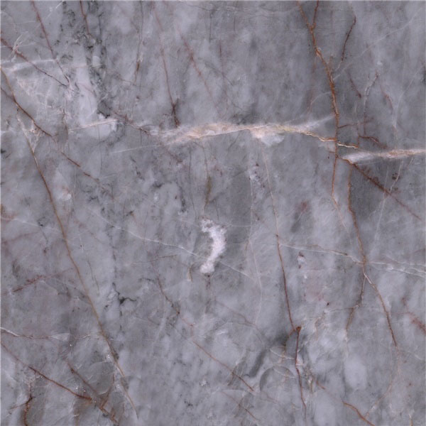Multicolored Gray Marble