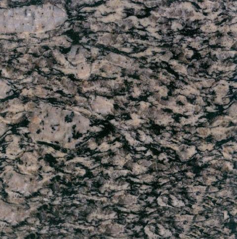 Nummular Brown Grain Granite