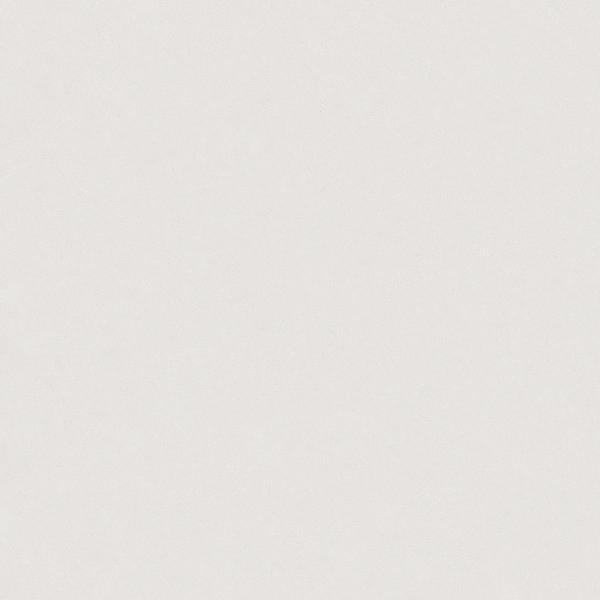 Organic White Casarstone Quartz - White Quartz