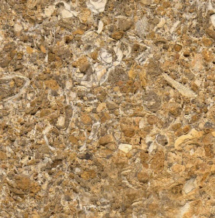 Orifossil Limestone