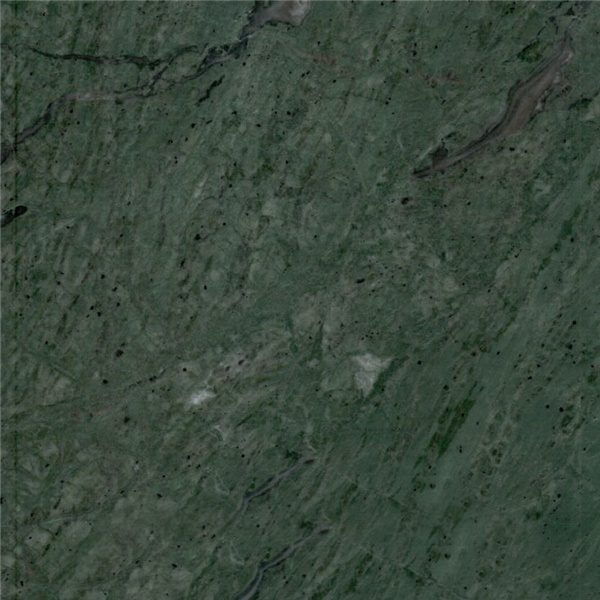 Palm Green Marble
