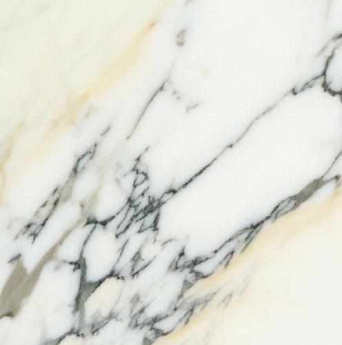 Paonazetto Bianco Marble