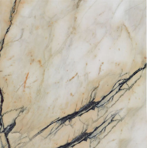Paonazzeto Marble