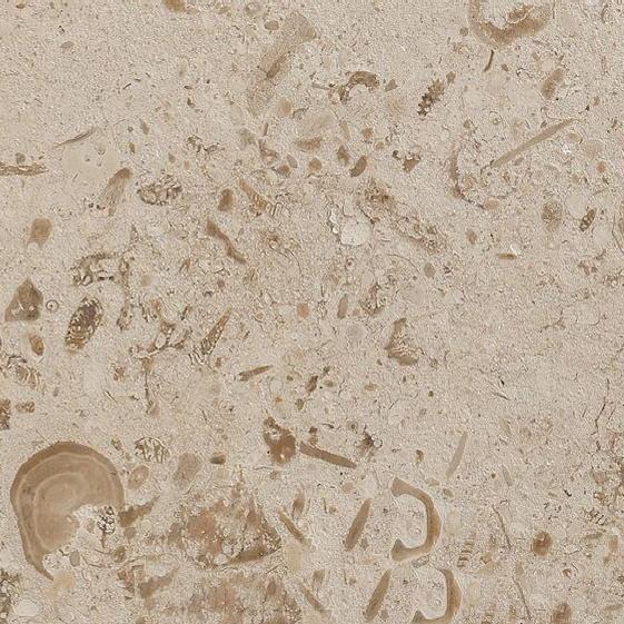 Perlina Limestone