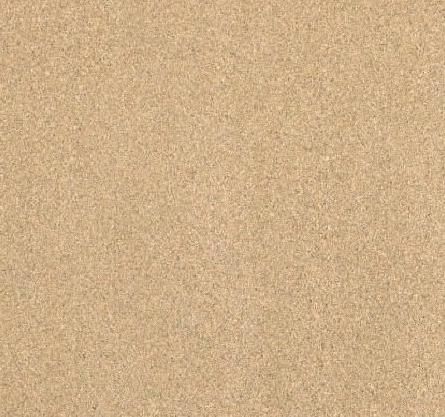 Pescenjaki Sandstone