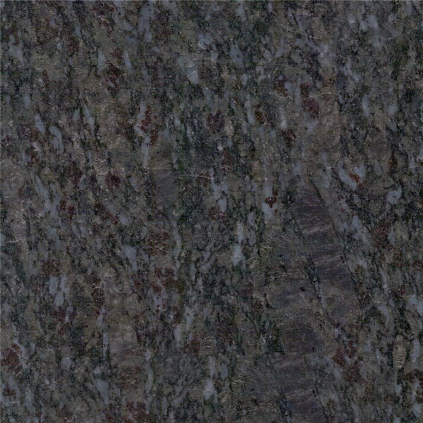 Phalaenopsis Granite