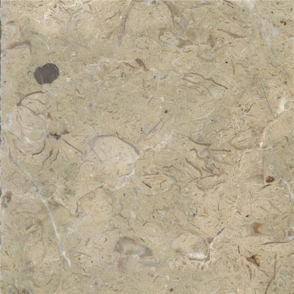 Pierre de Mont Caume Limestone