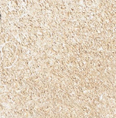 Pierre du Gard Limestone