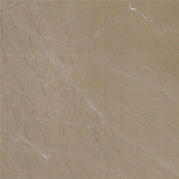 Platinum Century Beige Marble