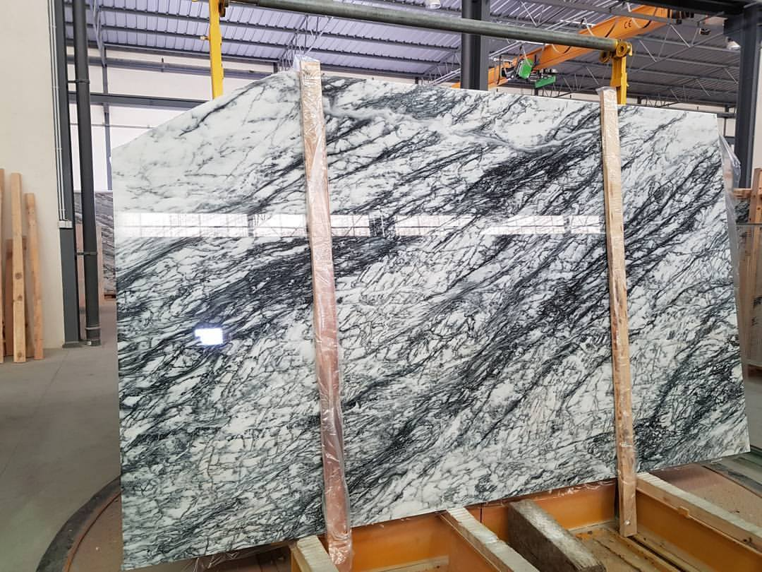 Polished Marble Slabs Dynossaurus Marble Slabs